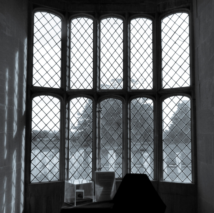 The Window (yes THAT one)