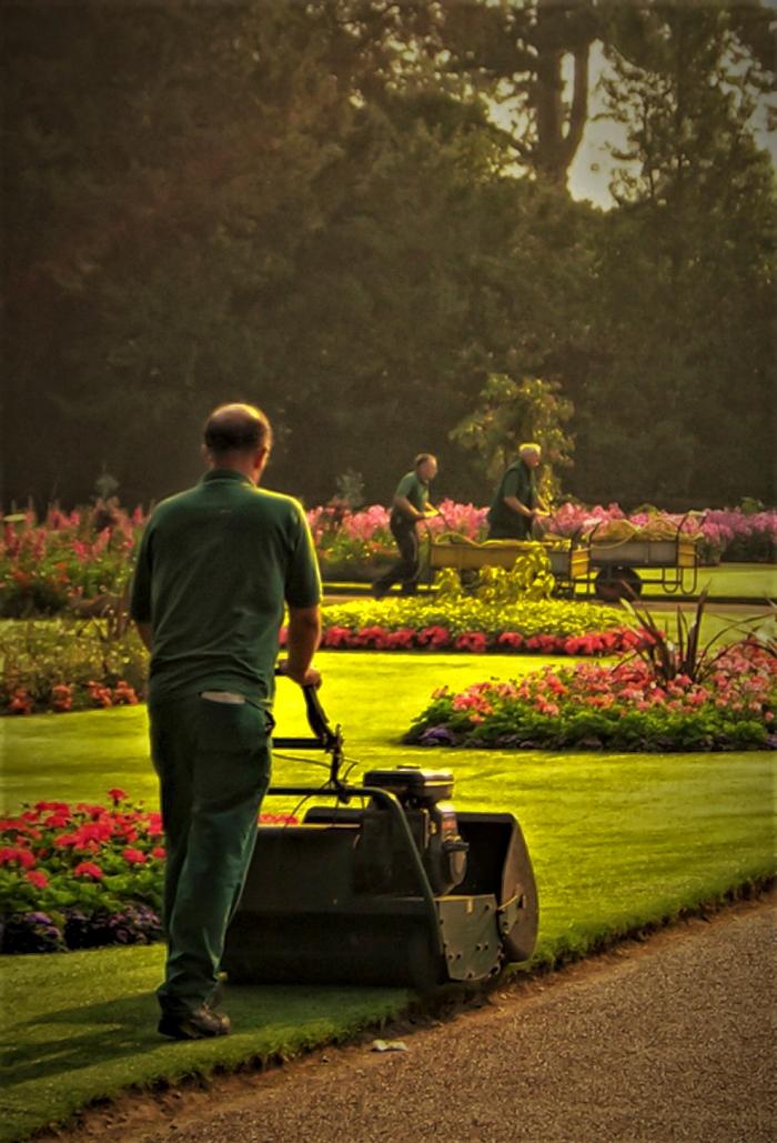 Gardening Anyone?