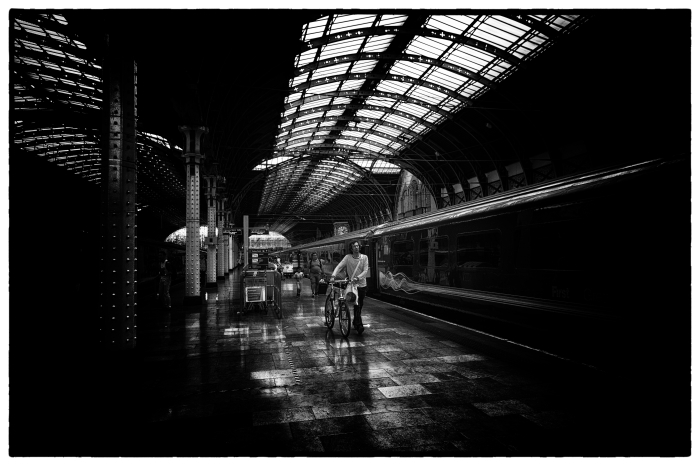 Paddington - Time for Home!